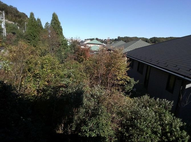 telloで撮影した屋外の写真